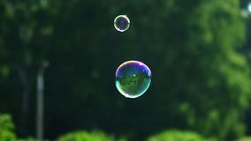 Two small soap bubbles flying and shining. Metamorphosis of Bubbles. Two small soap bubbles flying and shining. A device for creating a bubble. Multi-colored big stock video