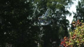 Two small soap bubbles flying and shining. Metamorphosis of Bubbles stock video