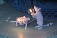 Two small white mouses. Play with light. Home art. Nice lamp royalty free stock photography