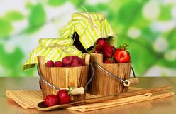 Two small wooden pail with berries Stock Photography