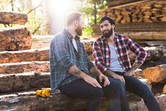 two smiling bearded lumberjacks talking to each other stock photography