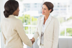 Two smiling businesswomen meeting and shaking hands Stock Image