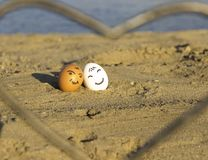 Two smiling chicken eggs on the beach stock image