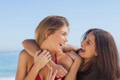 Two smiling friends hugging each other Stock Photos