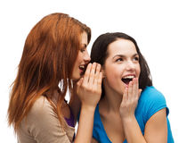 Two smiling girls whispering gossip. Friendship, happiness and people concept - two smiling girls whispering gossip royalty free stock photo