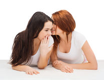 Two smiling girls whispering gossip Royalty Free Stock Image