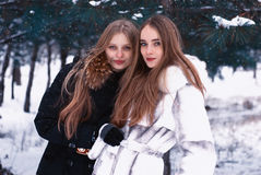 Two smiling girls in the winter forest Stock Images