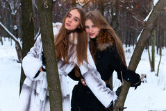 Two smiling girls in the winter forest Stock Photos