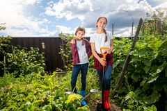 Two smiling teenage sisters working in garden at hot sunny day. Two smiling teenage sisters working in garden at sunny day Royalty Free Stock Photo