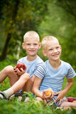 Two smiling twin brothers holding fruits Stock Images