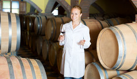 Two smiling winery employees in aging section in cellar Royalty Free Stock Photos