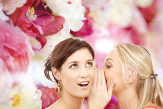 Two smiling women whispering gossip Royalty Free Stock Photo