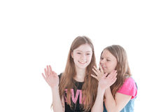 Two smiling young beautiful girls Stock Photography