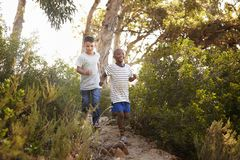 Two smiling young boys running down a forest path Stock Images