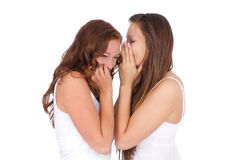 Two smiling young girlfriends talking. A secret over white Stock Photos