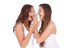 Two smiling young girlfriends talking. A secret over white Royalty Free Stock Photos