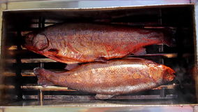 Two smoke-dried delicious fishes. Close up shot of smoke-dried delicious fishes in smoker box stock footage