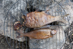 Two smoked fish on barbecue Royalty Free Stock Photo