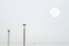 Two smokestacks and the moon while a seagull is flying crossing a grey sky Royalty Free Stock Photography