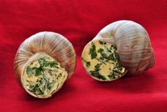Two snails with a delicious herb buttercream Royalty Free Stock Photos