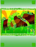 Two snakes. Illustration of the wild nature Royalty Free Stock Image