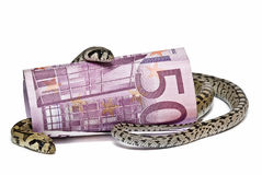 Two snakes and a big bank note. Stock Images