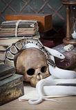Two snakes with human skull. Texas rat snake and Royal Python with human skull Royalty Free Stock Image