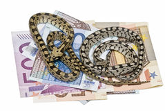 Two snakes on a lot of money.