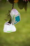 Two sneakers hanging from a tree branch Stock Photo