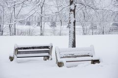 Two Snow Covered Benches by the River Stock Image