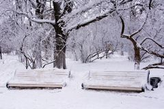 Two snow-covered benches royalty free stock images