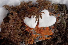 Two snow hearts on rock. Two Valentine's Day Hearts formed from snow on rock with orange lichens Royalty Free Stock Image