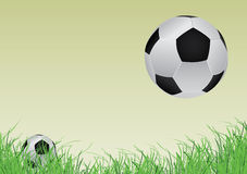 Two soccer ball and grass Royalty Free Stock Image