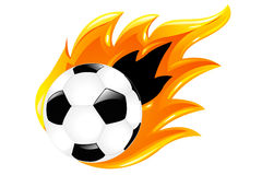 Two Soccer Balls. Vector Royalty Free Stock Photo