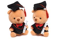 Two soft toy teddy bears wearing a graduation gown Royalty Free Stock Image