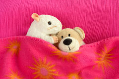 Two soft toys cuddling in bed. A white mouse soft toy is kissing a teddy bear on the head. Both are in bed covered with a pink blanket Royalty Free Stock Images