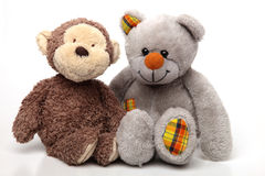 Two Soft Toys on White stock photos