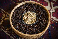Two different kinds of coffee beans in a bowl. Two sorts of coffee beans in a bowl Royalty Free Stock Photography