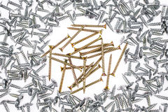 Two sorts of screws Royalty Free Stock Image