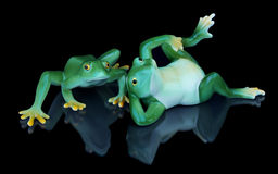Two souvenir frogs Royalty Free Stock Image