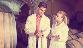 Two speaking wine house workers checking quality of product. In cellar Stock Image