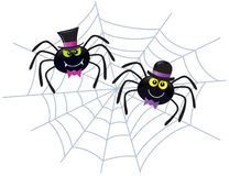 Two Spiders Wearing Hats On A Web Stock Image