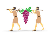 Two spies of Israel carrying grapes of Canaan Royalty Free Stock Images