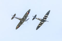 Two Spitfires Royalty Free Stock Photo