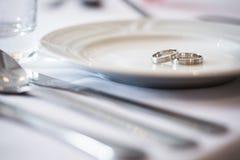 Two splendid wedding rings on a wedding day Royalty Free Stock Photos