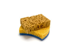 Two sponge Stock Images