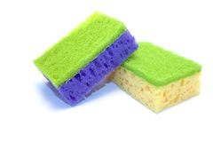 Two sponges on a white background. Two coloured sponges on a white background Stock Image