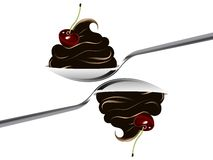 Two spoons Stock Images