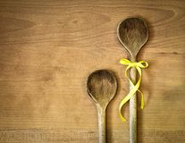 Two spoons Royalty Free Stock Photography