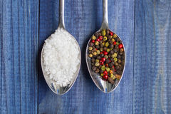 Two spoons with salt crystals and color peppercorns Stock Image
